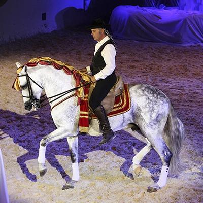 Miguel Barrionuevo maestro de la equitación