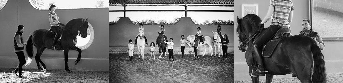 Clases de equitacion y doma clasica