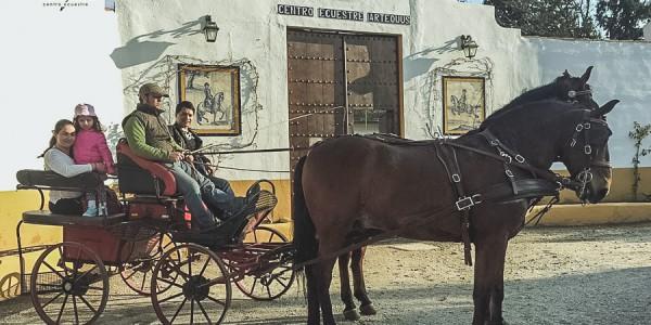 RECORRIDOS EN COCHES DE CABALLOS POR EL CAMPO EN MÁLAGA