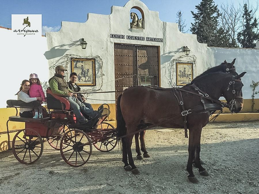 Paseo en coches de caballos