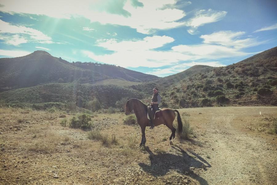 Clases de equitacion y monta, doma clásica y artística 3