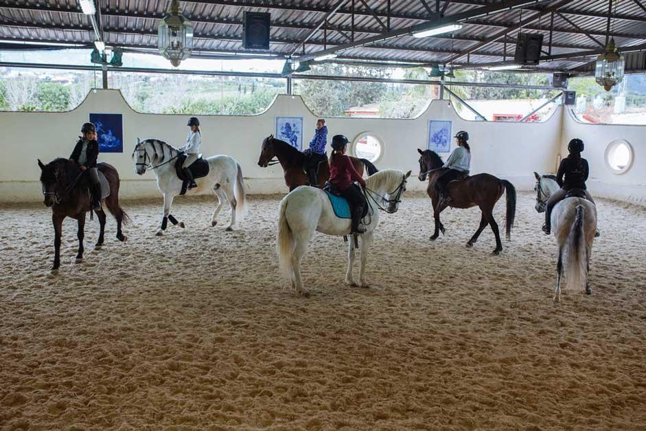 Centro de equitacion