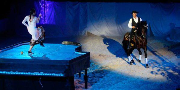 Maestro de equitación artística – Miguel Barrionuevo