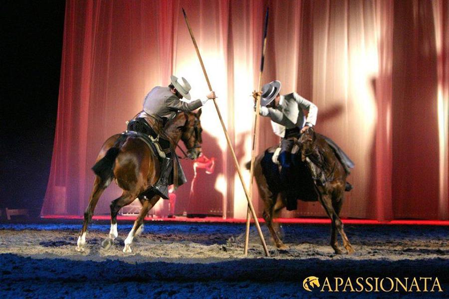 Espectáculos en Artequus 6