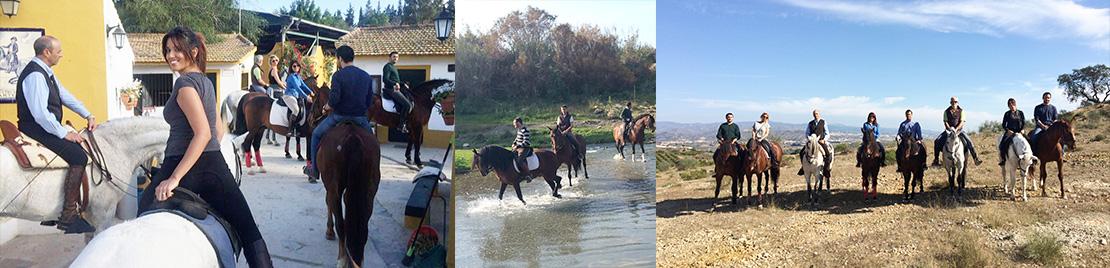 Excursiones y rutas a caballo en málaga